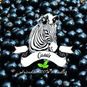 friandises sucre d'orge chevaux cassis