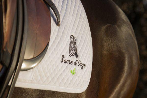 tapis de selle blanc sucre d'orge
